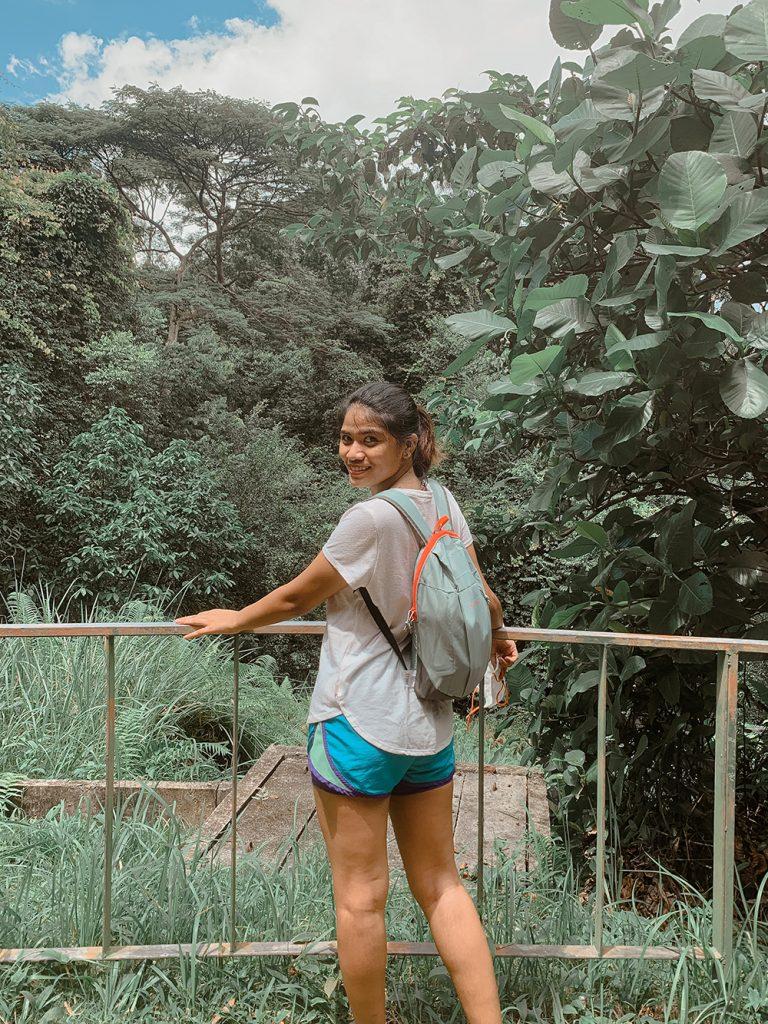MacRitchie Reservoir Park Singapore